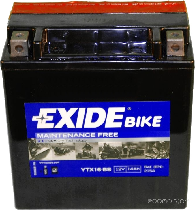Мотоциклетный аккумулятор Exide Maintennance Free YTX16-BS (14 А/ч)