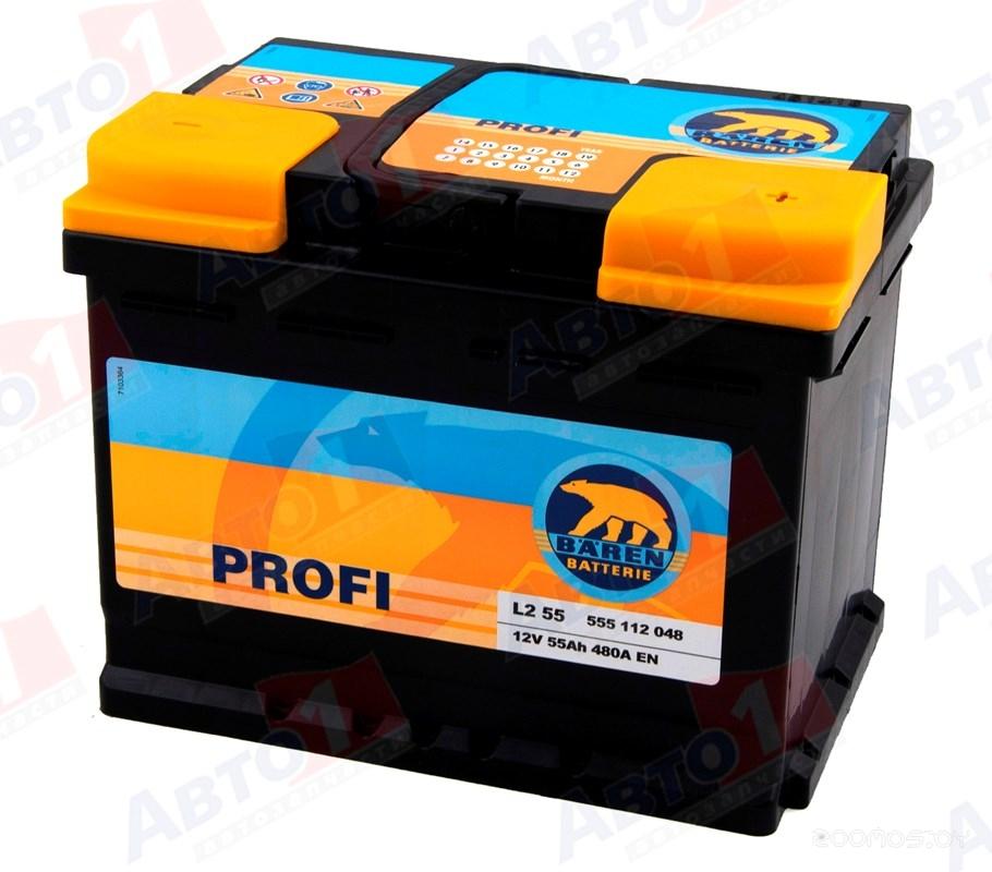 Автомобильный аккумулятор Baren Profi 7905680 (50 А/ч)